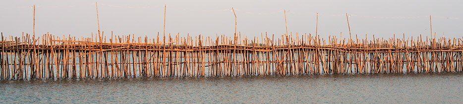 Le Bamboo Bridge ou Pont de Bambou de la ville de Kampong Cham au Cambodge.