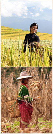 Découvrez la vie des des villages de l'Asie du Sud-Est.