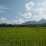 Laos image de rizière avec montagnes à l'horizon. Images et textes proposés par Frangipanier, votre boutique mobile de créations d'artisanat d'Asie du Sud-Est.
