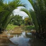 Vietnam image Delta du Mékong. Images et textes proposés par Frangipanier, votre boutique mobile de créations d'artisanat d'Asie du Sud-Est.