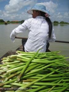 Artisanat équitable et authentique en jacinthe d'eau du Cambodge, une artisane récolte la jacinthe d'eau sur le Lac Tonle Sap avant de la faire sécher au soleil.