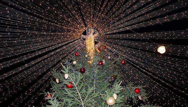 Frangipanier artisanat équitable et authentique, voeux de Noël 2016 sapin