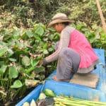 Voyage à la rencontre des artisans au Laos et au Cambode - Frangipanier artisanat équitable 8