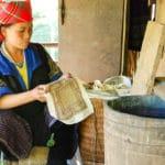 Frangipanier reportage sur la technique du batik chez les H'mong au Vietnam - 10