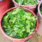 Frangipanier reportage sur la technique du batik chez les H'mong au Vietnam - 8