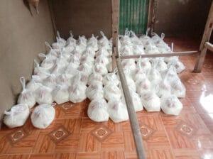 Frangipanier donation riz Laos suite aux inondations automne 2020-14