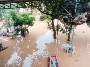 Frangipanier donation riz Laos suite aux inondations automne 2020-3