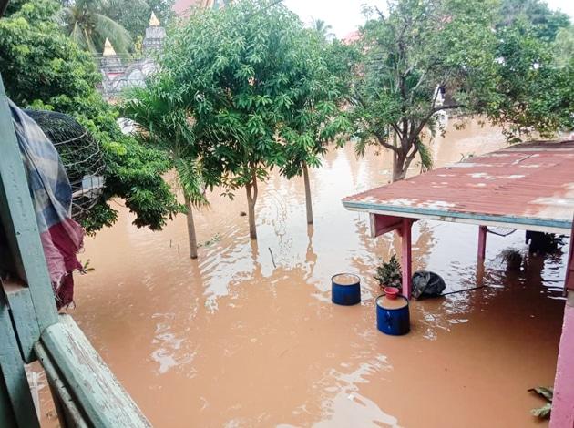 Frangipanier donation riz Laos suite aux inondations automne 2020-5